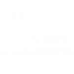 Servicio de embalajes y trincajes